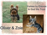 Zoie  & Oliver placed in a home